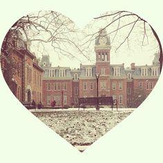 Happy Valentine's Day WVU! Photo Cred: @lydk_