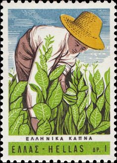 Find 1966 Tobacco Growing in Greece in the Stamps (Postage Stamps) - Europe - Greece category in Webstore online auctions Popular Hobbies, Vintage Stamps, Mail Art, Stamp Collecting, Cute Drawings, Illustration Art, Illustrations, History, Artist