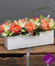 Orchid Spice Breen S Florist Houston Texas Flower Delivery Same Day Flower Delivery Florist