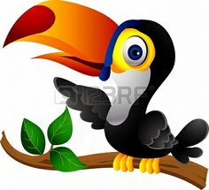 Toucan bird cartoon Stockfoto - 14474377