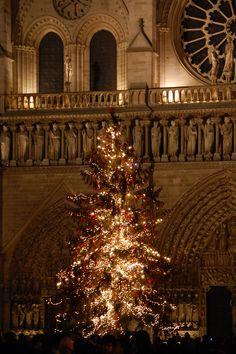 Notre Dame, Paris Christmas In The City, Noel Christmas, Merry Little Christmas, All Things Christmas, Beautiful Christmas, Winter Christmas, Christmas Lights, Christmas Decorations, French Christmas