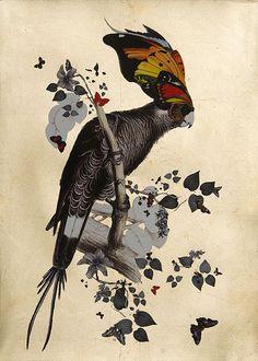 Colorful Creature Creations, Lear Gaukur 03, by Kristjana S Williams.