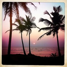 Change of plans instead of Spain were going here. How beautiful! Goa - India - Sunset - Hipstamatic