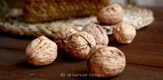 Las nueces: estrellas de los frutos secos en la dieta mediterránea, con un altísimo aporte nutricional que te explicamos. Salud en vena! http://eltercerbrazo.com/nueces-estrellas-de-los-frutos-secos/