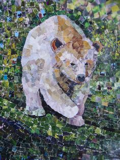 Spirit Bear walk silently through the moss-carpeted woods. White animals were considered by the Native Americans to represent a healing spirit, imbued with special powers.