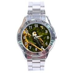 Eagle And Quiet Paradise Stainless Steel Analogue Men's Watch by FeaturedDesigns