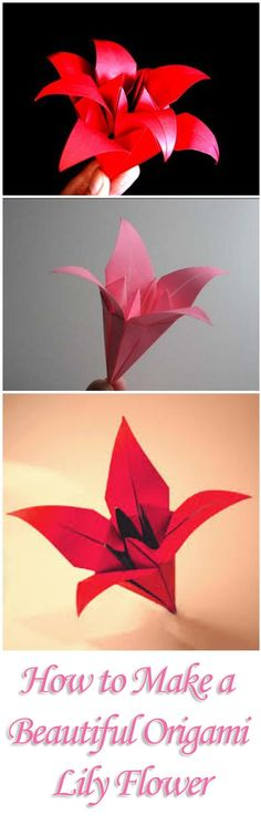 How to Make a Beautiful Origami Lily Flower