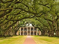Oak Alley Plantation, Louisiana - former sugar cane plantation now turned historic site and restaurant, also the film location for Lestat's home in Interview with a Vampire