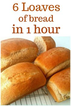 Making bread doesn't have to take all day - this simple recipe for Whole Wheat Bread makes 6 loaves in only one hour! We are sharing our family recipe for this delicious bread dough that can also be used to make cinnamon rolls and breadsticks! Bread Machine Recipes, Bread Recipes, Real Food Recipes, Cooking Recipes, Cooking Bread, Bread Baking, Wheat Bread Recipe, Bosch Bread Recipe, Homemade French Bread