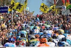 Alle hellingen op het parcours van de Ronde van Vlaanderen 2015 — Catena Cycling