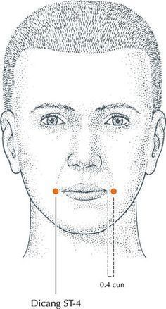 Facial Rejuvenation with Acupuncture Points – Province Apothecary ❣ Ayurveda, Acupressure Massage, Facial Massage, Acupuncture Points, Acupressure Points, Reflexology Points, Facial Rejuvenation, Face Yoga, Traditional Chinese Medicine