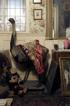 Image from the Paris flat that went unopened since 1900...opened in 2010.