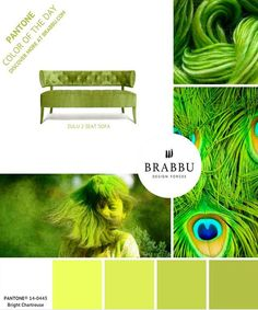 Five color trends that Pantone selected last week. Besides, we will also recommend home decor based on these colors. In spite of busyness, why not browse some color trends and have a colorful mood? Contemporary Home Furniture, Color Of The Day, Color Stories, Home Decor Trends, Decor Ideas, Interior Design Tips, Trendy Colors, Mid Century Design, Pantone Color