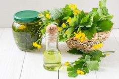 Celandine herbs in a basket, infusion in the bank and oil for herbal medicine. Medicine Book, Herbal Medicine, Herbal Tinctures, Herbalism, Herbal Remedies, Natural Remedies, 100 Proof Vodka, Cheap Vodka, Small Bottles