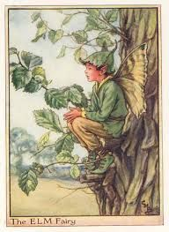 Image result for cicely mary barker flower fairies prints