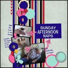 Digital: Sunday Afternoon Naps