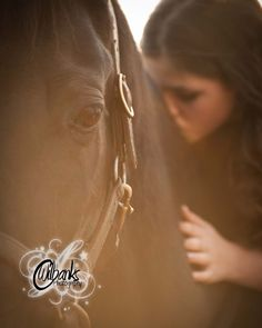 a relationship with your horse filled with trust, love and companionship