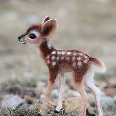 Bambi Cuteness overload Tag Your Friends … Baby Bambi Cuteness overload Tag Your Friends .Baby Bambi Cuteness overload Tag Your Friends . Cute Wild Animals, Baby Animals Super Cute, Baby Animals Pictures, Cute Little Animals, Cute Animal Pictures, Cute Funny Animals, Felt Animals, Animals Beautiful, Cute Cats