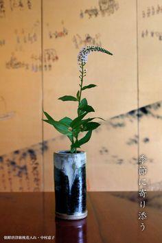 朝鮮唐津長花入・中村恵子 Vase, Gold, Home Decor, Decoration Home, Room Decor, Vases, Home Interior Design, Home Decoration, Interior Design