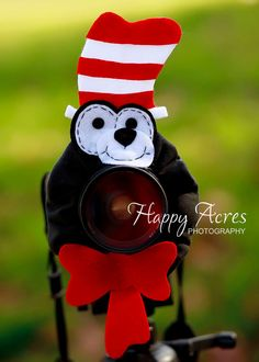 Love love!!!  Lens Bling Cat in the Hat Ready to Ship by HappyAcresFarm on Etsy, $20.00