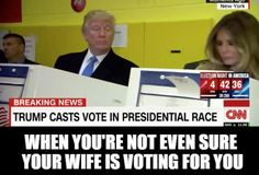 These memes are the greatest. Beautiful, terrific memes. No one has seen better memes than these. That I can tell you. Believe me!: Donald and Melania Voting