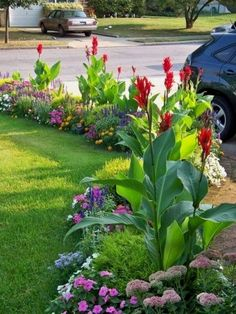 Top Landscaping ideas