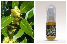 Aceite esencial de Laurel. Ecoalma 30 ml. Libre de agroquímicos y aditivos