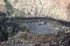 Where the rock meets the soil near Capetown, South Africa. Are these the vineyards where the wine comes from?