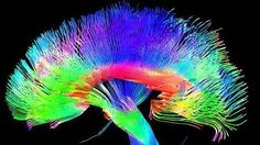 Is consciousness just an illusion? By Anna Buckley
