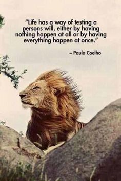 life has a way of testing a persons will, either by having nothing happen at all or by having everything happen at once