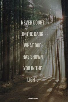 Never doubt in the dark what God has shown you in the light.