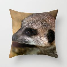 Meerkat  Throw Pillow by F Photography and Digital Art - $20.00