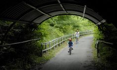 Beginning in Leakin Park and following a stream to the Patapsco River, the Gwynns Falls Trail is a 15-mile hiking and biking trail through a...