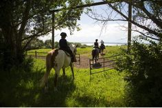 Guests ride through a gate at Eagle Lake at the Rockin R Guest Ranch near Strathmore. Alberta dude ranches offer families a stay in the Wild West