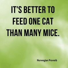 It's better to feed one cat than many mice. Norwegian mice. Norwegian lub,,,,,,,,,,,,,,,,,,,,,,,,,,,,,,,,,,,,,,,,,,,