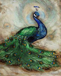 Elegant Peacock II by Tre Sorelle Studios