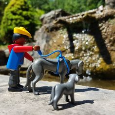 Route  #playmobil #dogstagram #total_toyspics #playmo #dogs #total_rural #playmobilfigures #art #creative #natura_love_ #rural #rustlord_pets #catalunya #toy #igw_details #travel #traveller #igerscatalunya #dog #portraits #playmobilfan #playmobilart #nature  #cat_rural #playmobile #portraits #landscape #toys