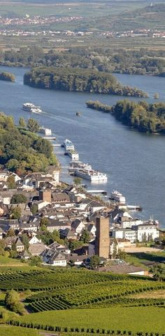 Rhine...Germany from Leila Abreu.--This is Rudesheim (sp?)--one of our favorite stops on our one and only cruise. (mkc)