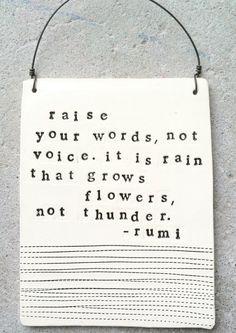 don't raise your voice