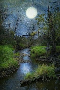 Moon over the creek - Ron Germundson
