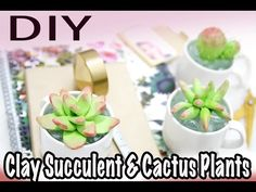 DIY: $1 Succulents & Cactus (Polymer Clay) - YouTube