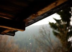 There is nothing like the smell of rain in the mountains.