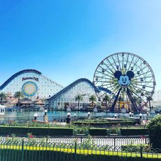 Roller Coaster has its Ups and Downs. But it's your choice to scream or enjoy the ride. #californiaadventurepark #californiaadventure2016 #disneylandparkhopper #losangeles by giendfrogz