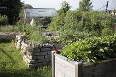 Ich Bau Mir Einen Permakultur Garten Autarkieblog Permakultur Garten Garten Design Plane