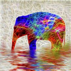 #Electric #Elephant by #Kaye_Menner #Photography Quality Prints Cards Products at: http://kaye-menner.pixels.com/featured/electric-elephant-by-kaye-menner-kaye-menner.html