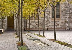Westminster Presbyterian Church courtyard. Coen + Partners