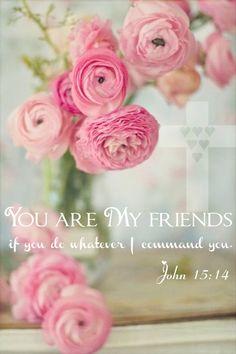 As a disciple, I am a friend of Jesus Christ. ~ John 15:14