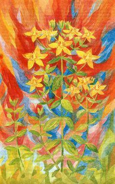 Flowers painted by Walther Roggenkamp http://www.kunstdownload.de ...