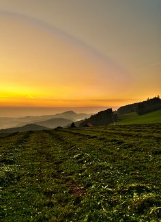One of the last pictures of the day. One of the last few glimpses of light. One of the few good reasons to descend through a dark and unfamiliar forest. I Fall In Love, Switzerland, Zurich, Mountains, Sunset, Landscape, Pictures, Travel, Outdoor