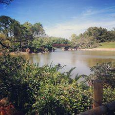 From Instagrammer @maggiemuffin27 : Japanese paradise <3 #morikami